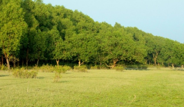 Image result for চর কুকরী-মুকরী