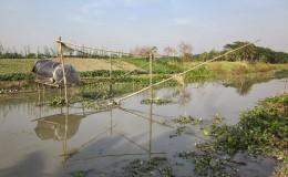 Dhanshiri River