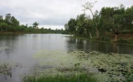 Barshijora Eco Park