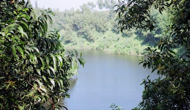 image of Foy's lake