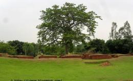 Jagaddal Vihara