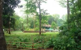 Kaptai National Park