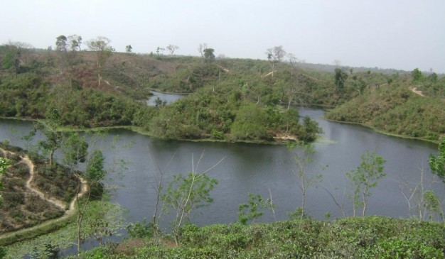 image of Madhobpur Lake and Tea Estate