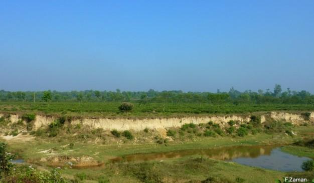 image of Satchari National Park