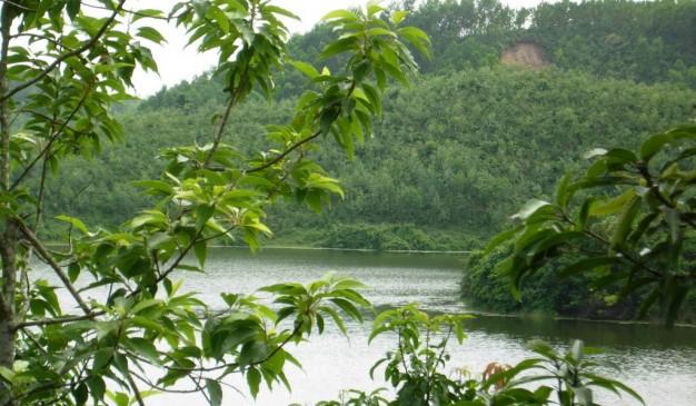 image of Prantik Lake