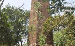 Narayanpur Nilkuthi
