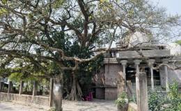 Chinishpur Kalibari
