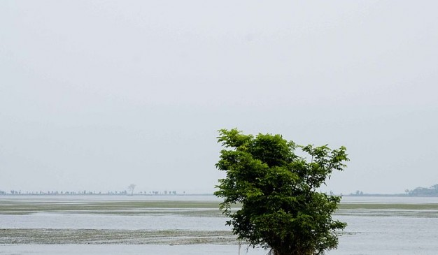 image of Tanguar Haor