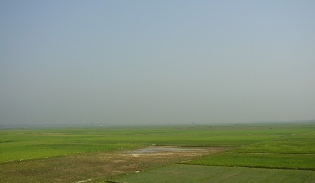 wetland resource in bangladesh Wetlands in bangladesh a country with high count of rainfall needs to preserve it's wetlands a country like bangladesh bangladesh journal of water resource and.