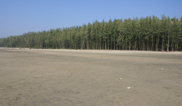 image of Himchhari National Park