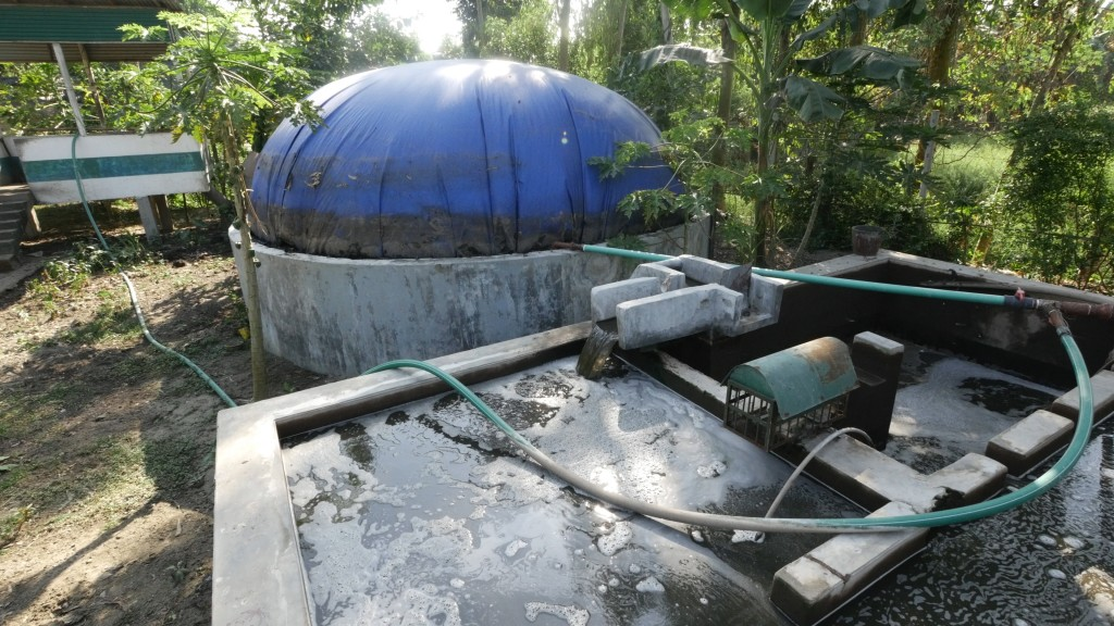 How To Build A Fish Farming Pond • Insteading